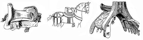 http://www.thehorses.ru/text/img_text/dospeh/4.jpg